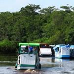 Berklothok ke <b>Tanjung Puting</b>