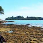 Panasnya Pantai <b>Air Manis</b>
