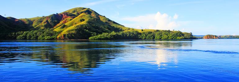 Tamu Pertama Pulau <b>Rinca</b>