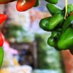 Hidup dari Paprika dan <b>Sayur</b>
