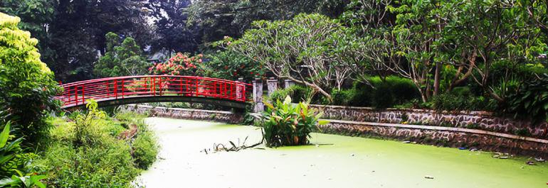 03A_Bogor