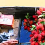 <b>Perahu</b> Penjual Rambutan