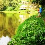 Desa Bernama <b>Ranu Pani</b>