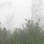 Dihadang <b>Hujan</b> dan Longsor