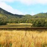 Intip Puncak Gunung <b>Semeru</b>