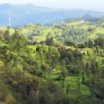 Desa <b>Fatumnasi</b> nan Permai