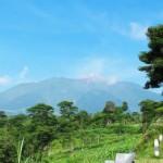 Di Bawah Gunung <b>Merapi</b>